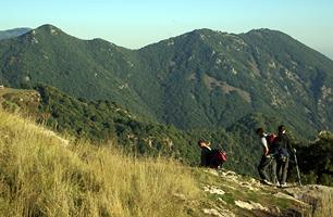 El Montseny. El Pla de la Calma.