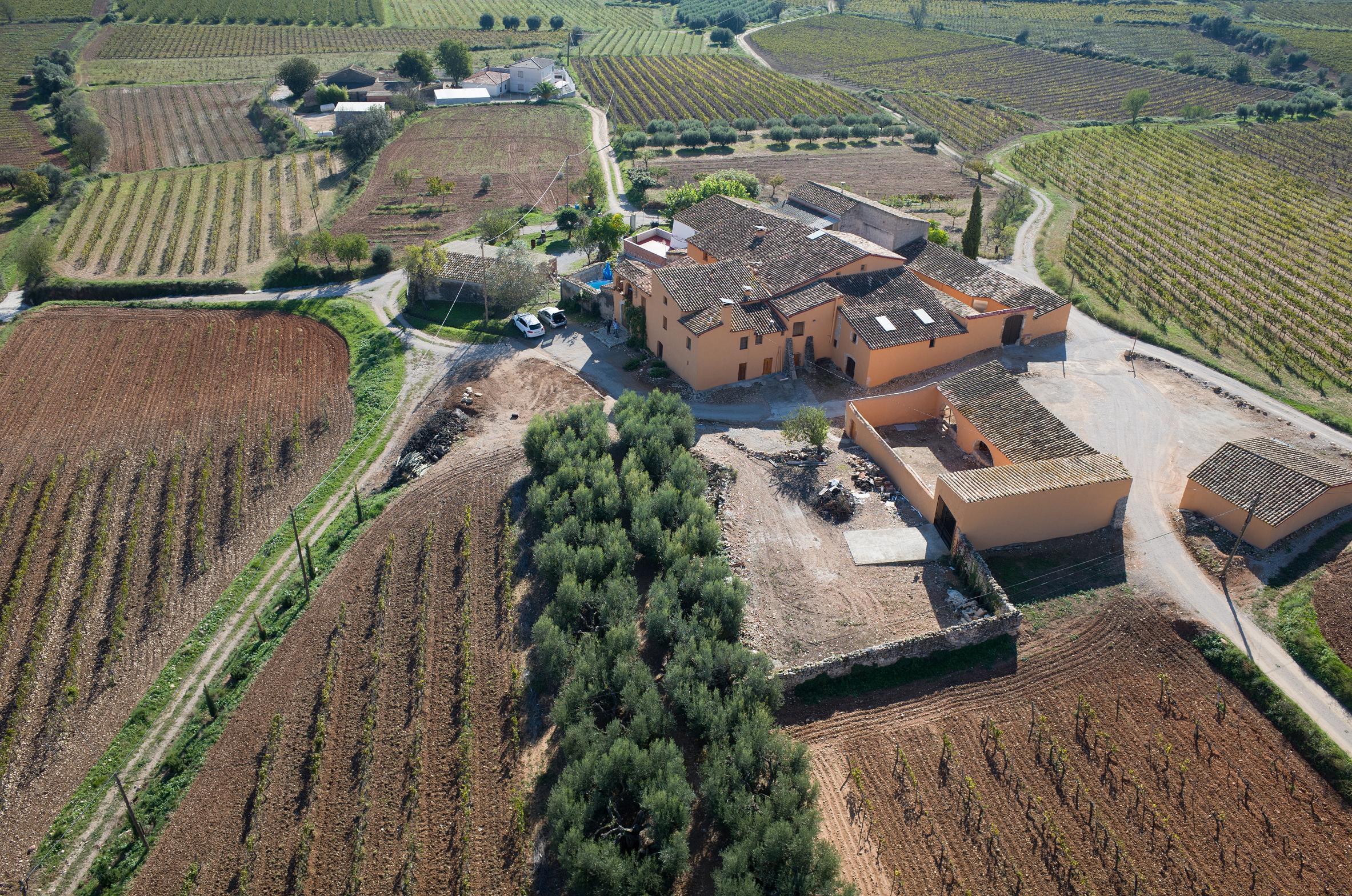 Mas Romani State Colet Wines